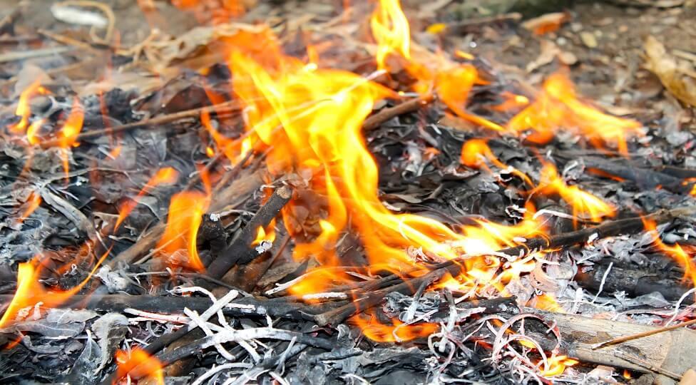 שריפה מתפשטת ביער דבירה